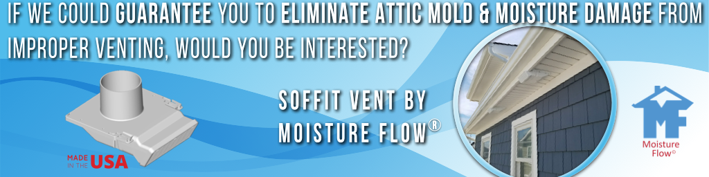 Moisture Flow House Mold Remediation Cost